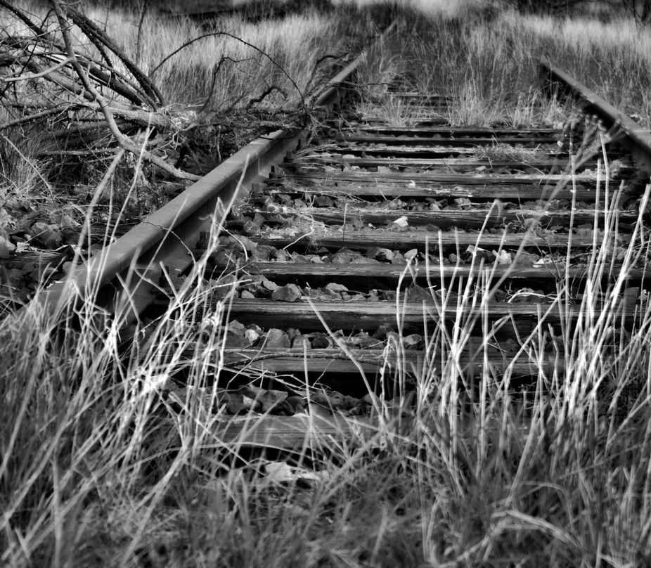 lost railway in Northern Germany
