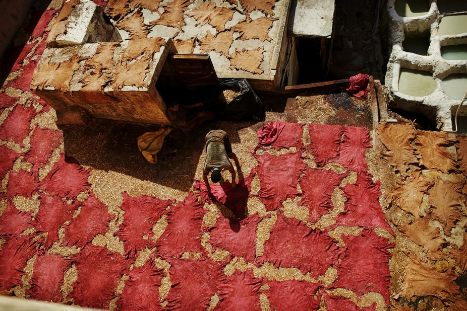 The photo was taken at the Chouara Tannery in Fez, Morocco. In this photo a worker is laying out ...