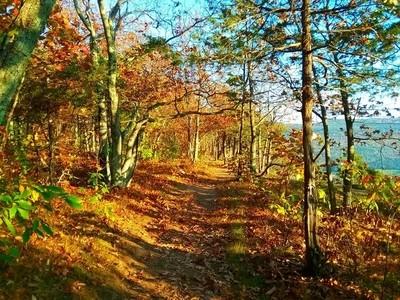 Fall Mountain trail