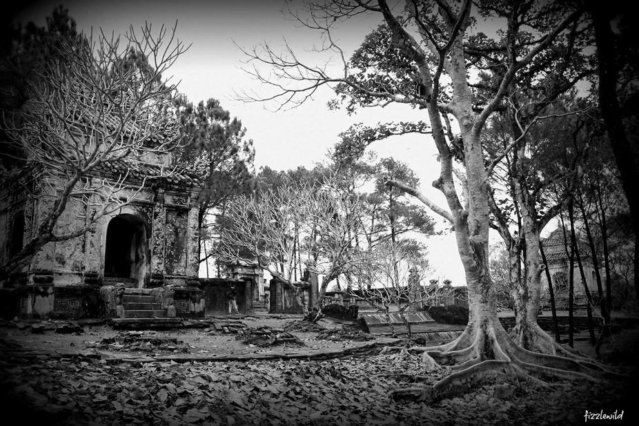Vietnam Forest Temple