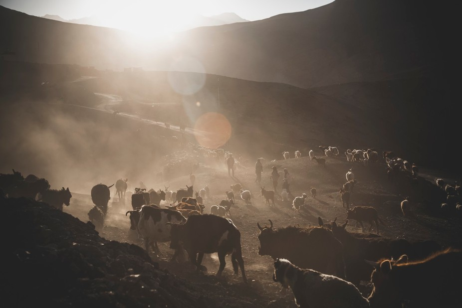 This image is from a small village named Langza. It lies at the height of about 14,000 feet and h...