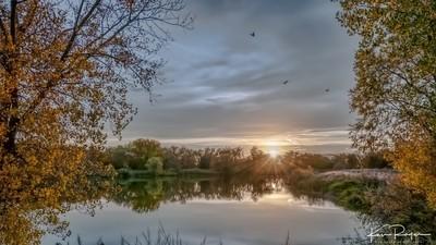 Tranquil Evening - Deer Run Nature Area
