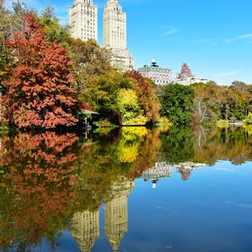 Autumn in Central Park,NY