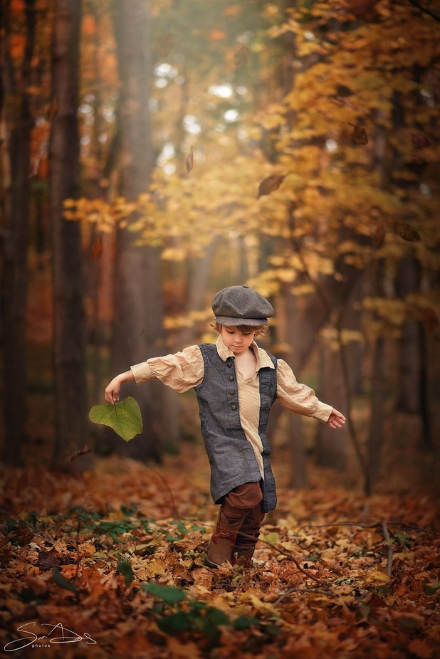 Dancing with the Leaves by Arastan - Covers Photo Contest Vol 42