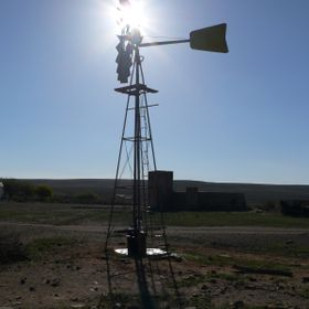 This is taken on the Brandkop Farm in the Northern Cape, indicating up to 44 degrees Celsius.