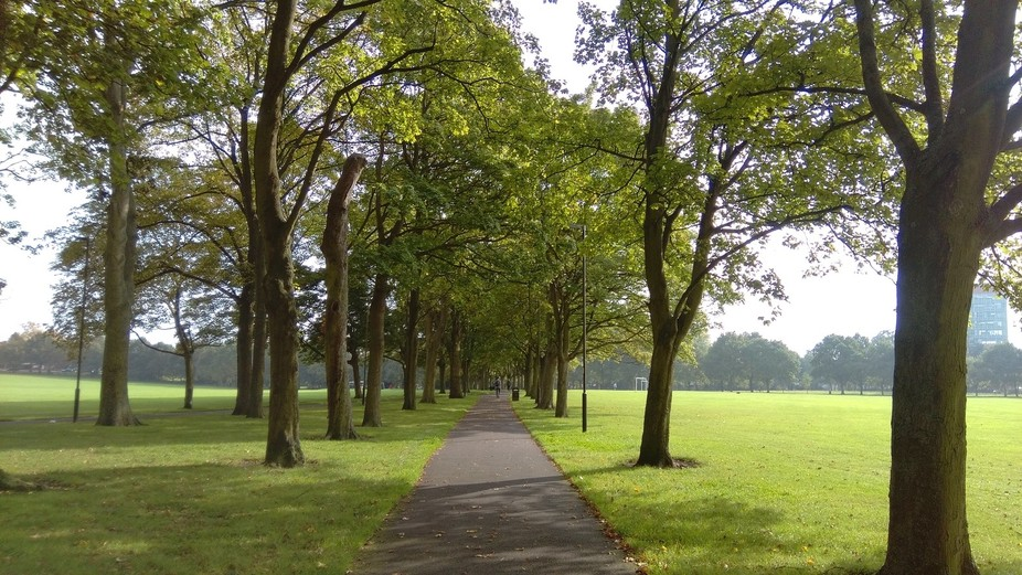Beautiful English Summer day, the layout of trees and the path captured my eye!  The greenery.. t...