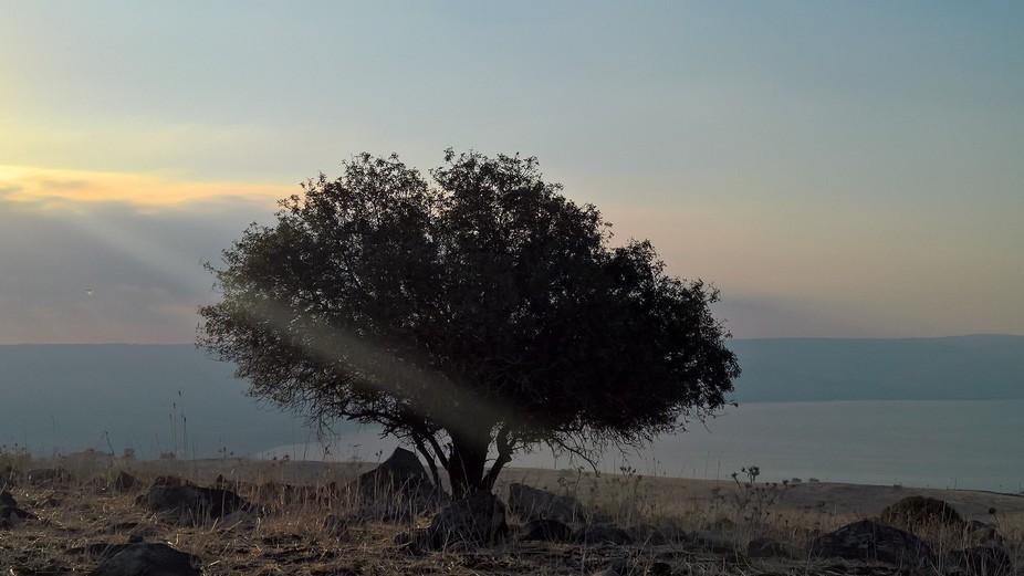 Taken near Vered HaGalil  a beautiful spot to stay Galilee Israel.