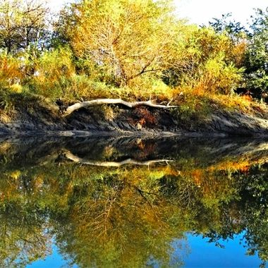 River Reflections copy
