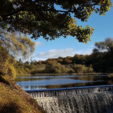 Sanquhar Pond and the Mosset Burn, Forres,  24/10/17, Blue skies and sunshine, canna beat it ... :-)