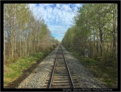 Spring Rails - 2017 Eastern Ontario - Photo by David R. Smith
