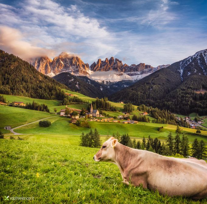 Dolomites by VDPFreelancer - Farms And Barns Animals Photo Contest