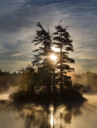 Sunrise Over Moose Pond