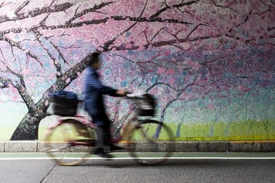 Bicycle Rider in Tokyo