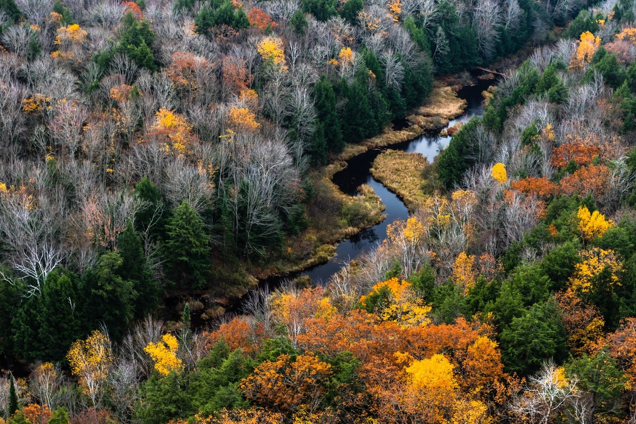 A Peaceful Collection Of Natural Streams That You Must See