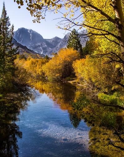 Eastern_Sierra_Fall_Color_5D_10122017_0599a