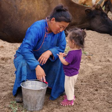 A woman in central Mongolia was helping to milk the family's cows. As she finished milking one of the cows, her niece walked over to her to talk with her. She paused from milking to have an intimate conversation with her niece.