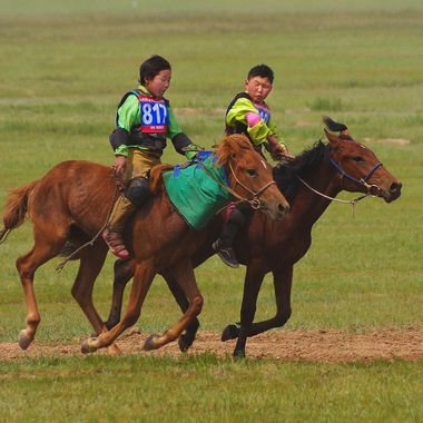 Each summer Mongolians hold nadaam festivals around their country. Nadaam  features Mongolia's three national sports--horse racing, archery and wrestling. The most prestigious horse race is run in open country outside the nation's capital. Young boys and girls ride to cross the finish line first. The competition is often fierce, even between these two boys who were well behind the winner as they approached the finish line.