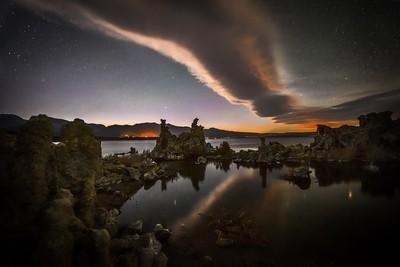 Mono Lake Serpent