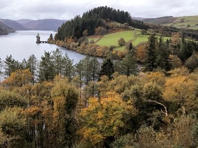 Autumn at Vyrnwy
