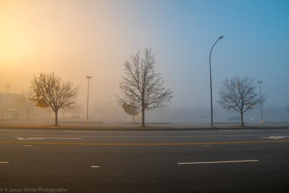 Foggy Morn' X