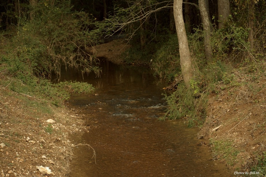 Another shot of the small stream near my house