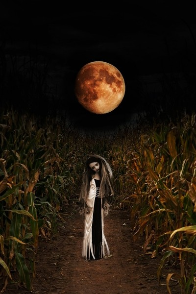 Scary in the cornfields