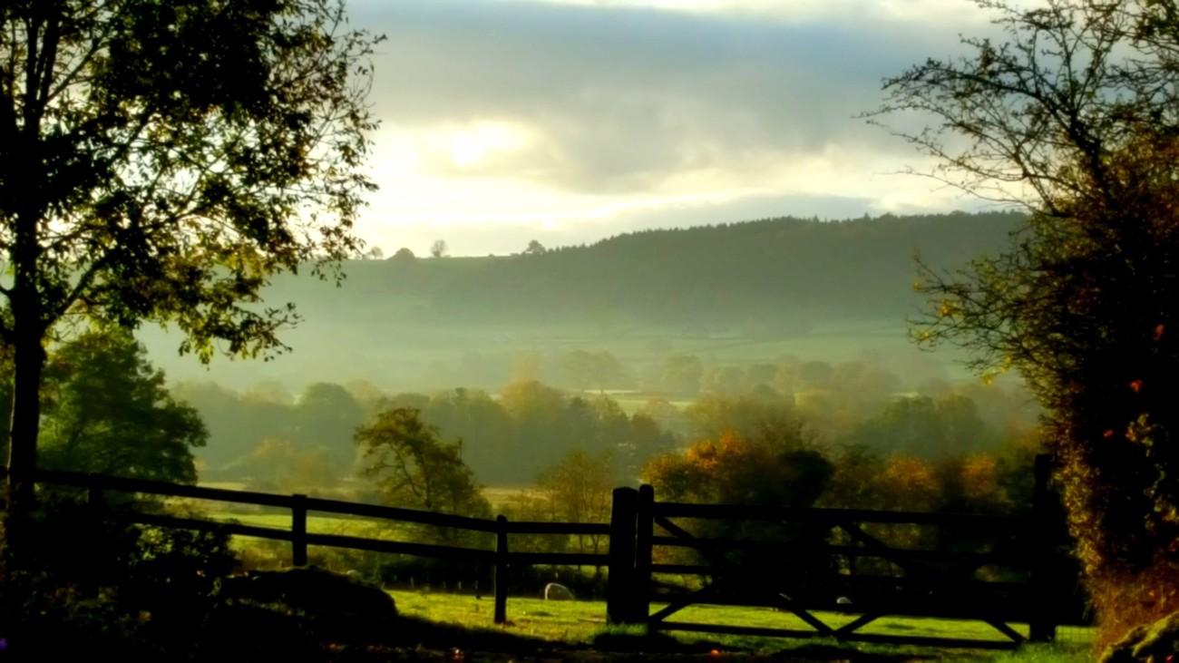 A Shire