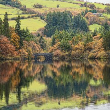 In Autumn, a road bridge spanning a river entry into Lake Vyrnwy
