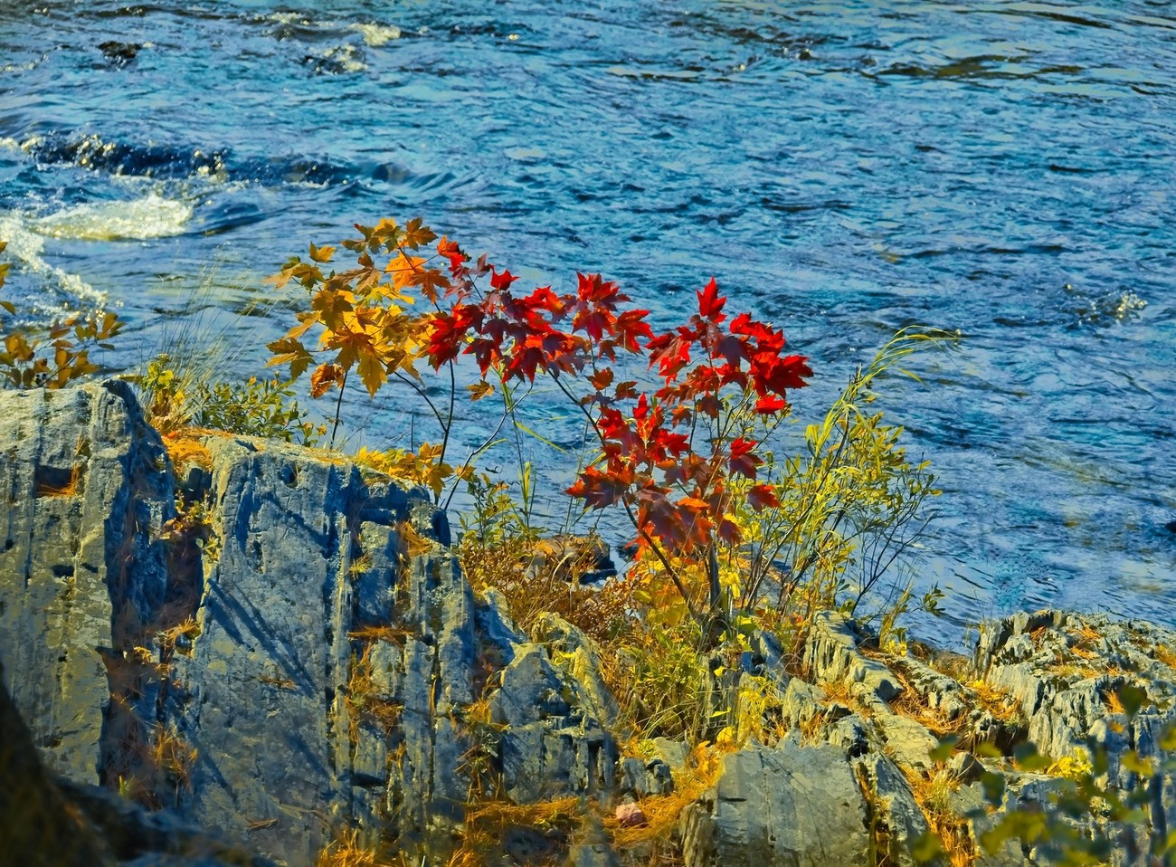 A little bit of color by a river in Maine, set by granite.