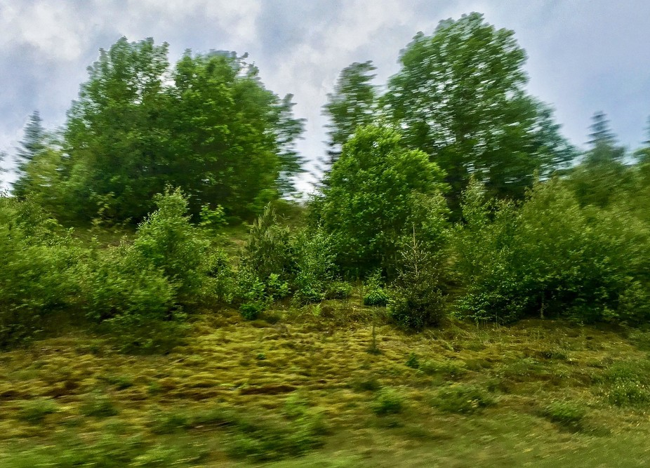 View from a car window during a road trip in Sweden
