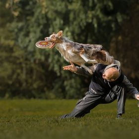 "Picture taken during the workshop ""Dogs in Action"" with Claudio Piccoli"