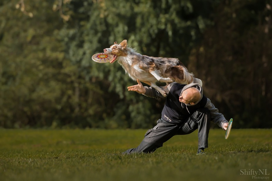 """Picture taken during the workshop """"Dogs in Action"""" with Claudio Piccoli"""