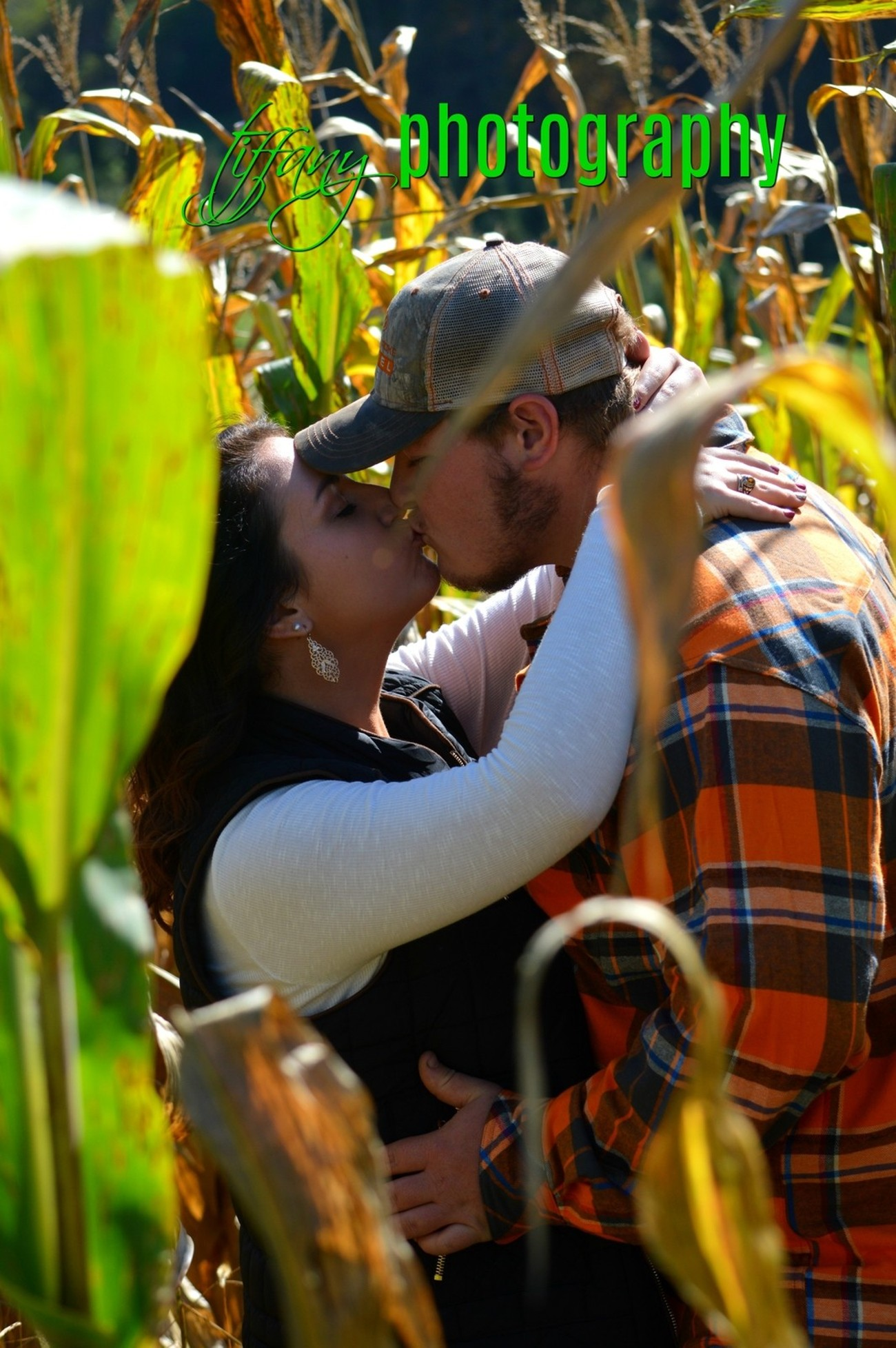 Corn Field Love