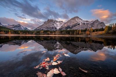 Wedge pond sunrise