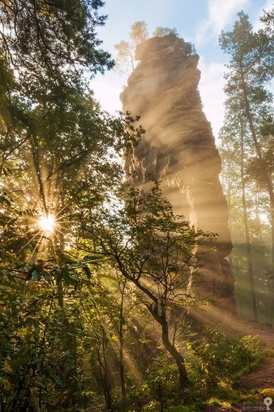 Sunstarand beams