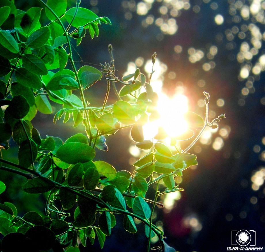 Every day is new beginning ...so start your day ..taking a deep breath ..  Good morning..  #SUN_R...
