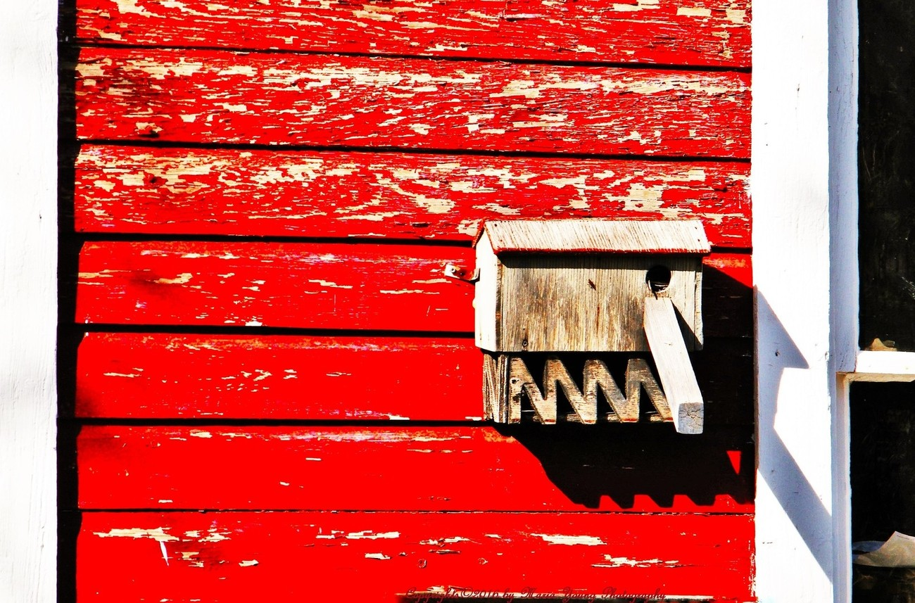 The Colour Red