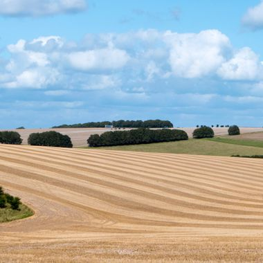 Landscape near Corton, Wiltshire, UK.