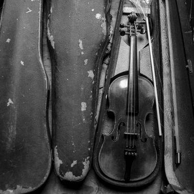 Violin - Black and White