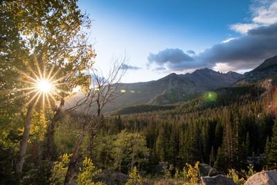 A Sunstar Morning