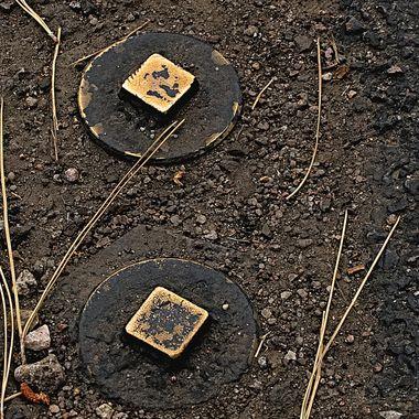 Brass utility caps embedded in asphalt parking lot