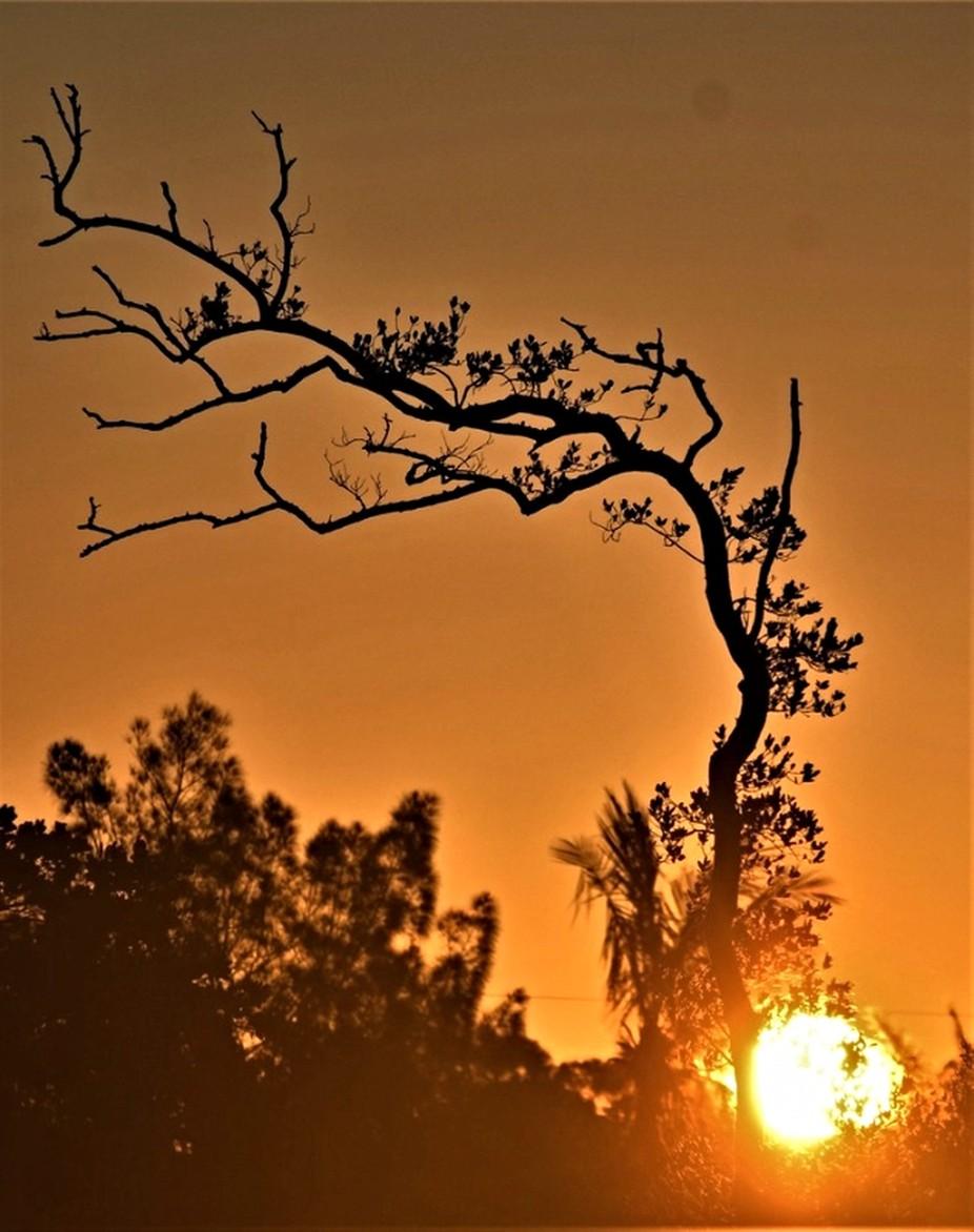 Beautiful sunrise in HD
