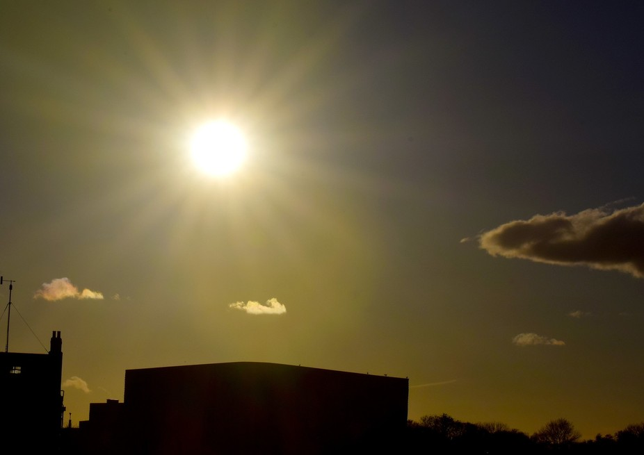 Late sun DSC_0223