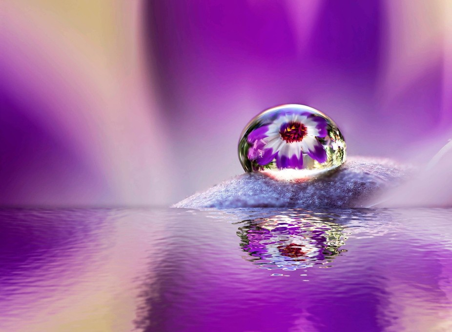 Just one drop with reflection.