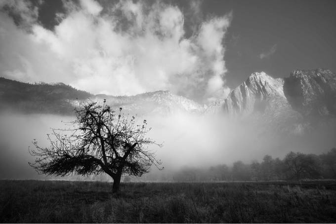 Yosemite Valley can create some amazing atmospheres. Truly a photographers playground by KRL_Photo - Black And White Compositions Photo Contest vol2