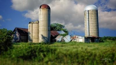Wisconsin Barn 11