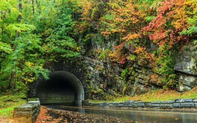 Tunnel through Fall color