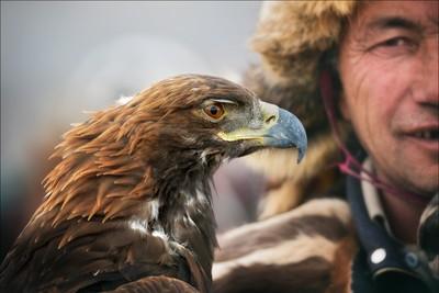 Eagle Eye's