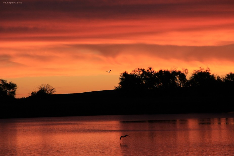 Sunrise by Lake Hasty in Colorado. The sky caught fire and lasted almost 15 minutes. WOW Factor t...
