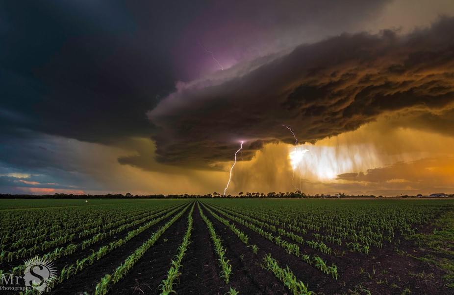 Well this is one of the most amazing storms I have witnessed. I decided hours earlier with Murray...